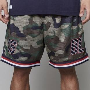 Cayler & Sons BLACK LABEL CSBL Bucktown Bball Shorts multicolor