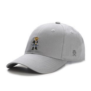 Cayler & Sons WL CHMPGN DRMS Curved Cap grey / mc WL-CAY-HD16-CRVD-04
