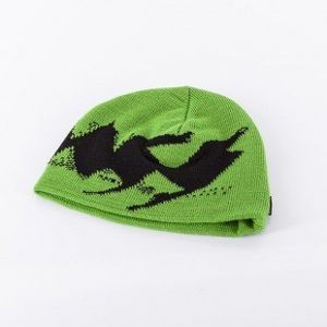 Mass dnm winter beanie Bronx green