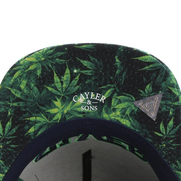Cayler & Sons Green Label snapback Force Haze Cap grey / green GL-CAY-SU16-06