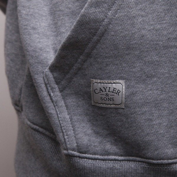 Cayler & Sons bluza Word Up hoody grey heather / mc CAY-HD14-AP-01