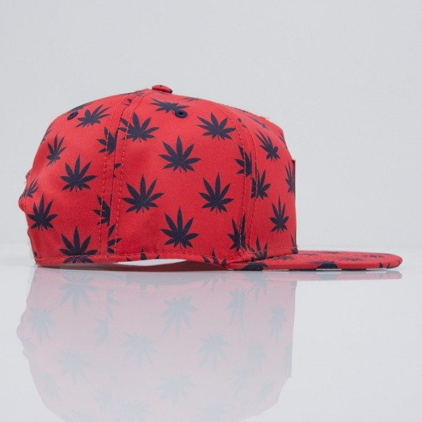 Cayler & Sons cap snapback Budz n Stripes 2-Tone red / navy (CAY-SS15-02-03)