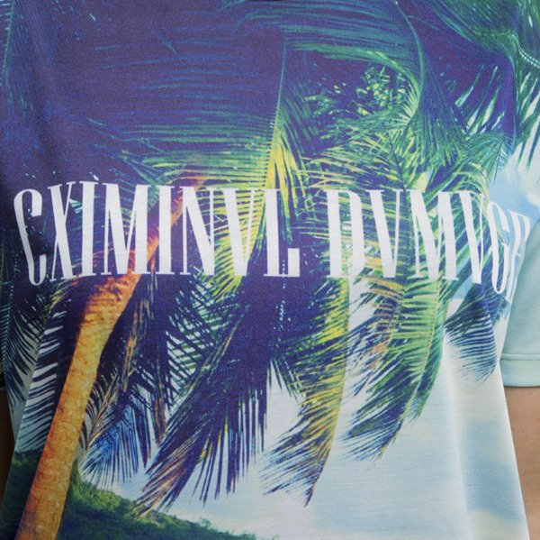 Criminal Damage t-shirt Caspar multicolor WMNS