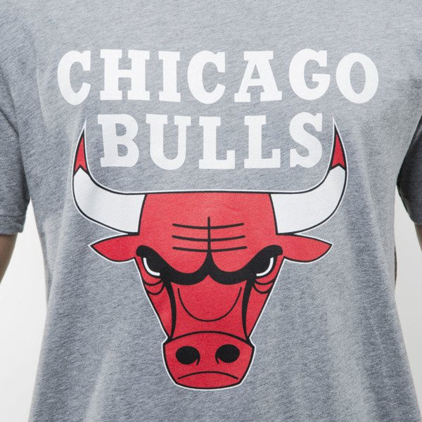 Mitchell & Ness t-shirt Chicago Bulls grey heather TEAM LOGO Traditional