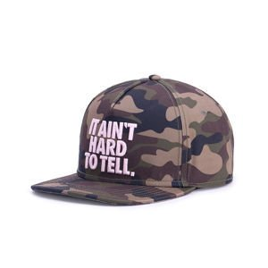 Czapka Cayler & Sons Black Label Ain't Hard Cap multicolor