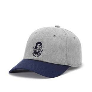 Czapka Cayler & Sons WL Frat Boy Curved Cap grey