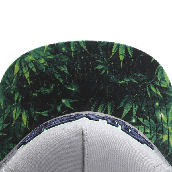Cayler & Sons Green Label snapback czapka Force Haze Cap grey / green GL-CAY-SU16-06