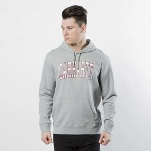Carhartt WIP Hooded Division Sweat grey heather / multicolor I024675