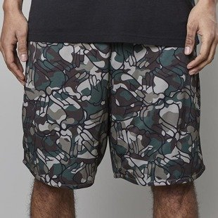 Cayler & Sons C&S WL La Familia Mesh Shorts multicolor