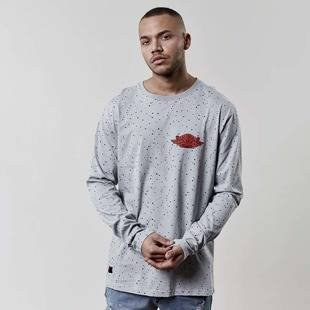 Cayler & Sons Fly High Longsleeve grey WL-SS17-AP-12