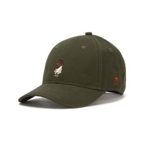 Cayler & Sons WL Seezn Curved Cap olive / mc