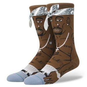 Stance socks Anthem Tupac brown M545A17TUP