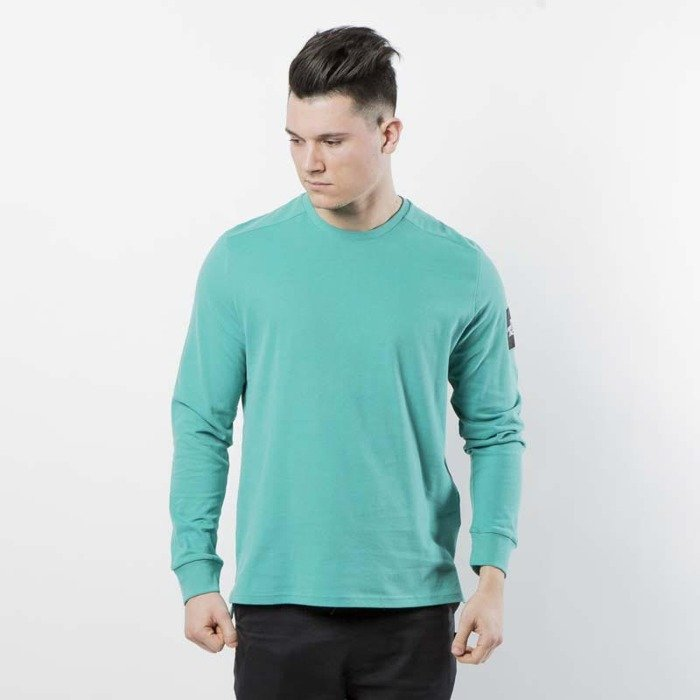 29083d3c03bf The North Face M L S Fine 2 Longsleeve Tee porcelain green T93BPHZCV ...