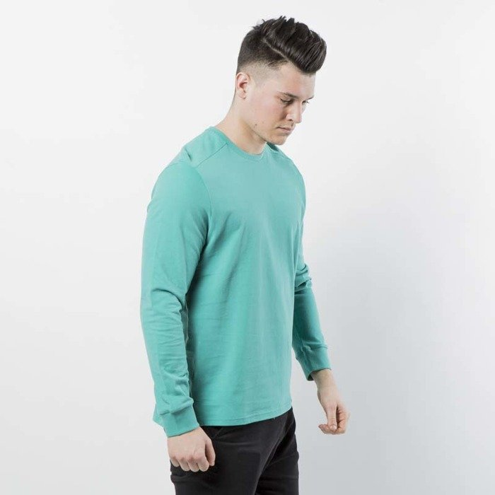 c794f949ea9e ... The North Face M L S Fine 2 Longsleeve Tee porcelain green T93BPHZCV ...