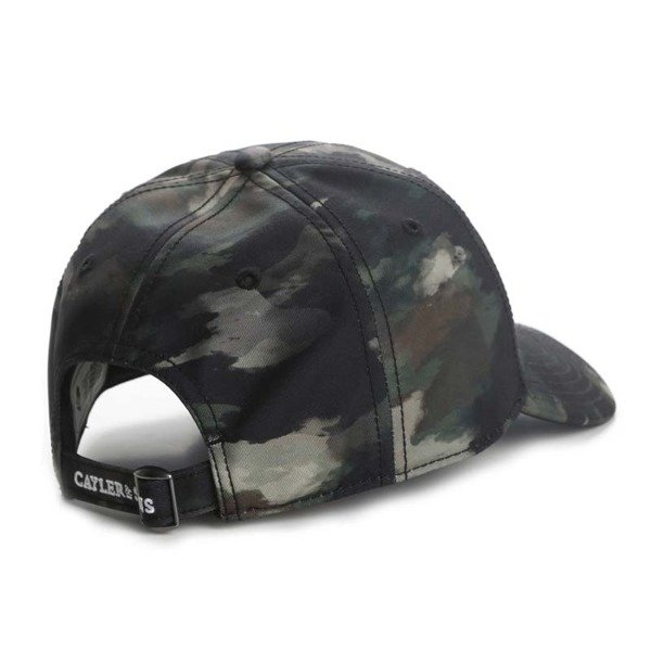 Cayler & Sons WL Scripted Curved Cap multicolor
