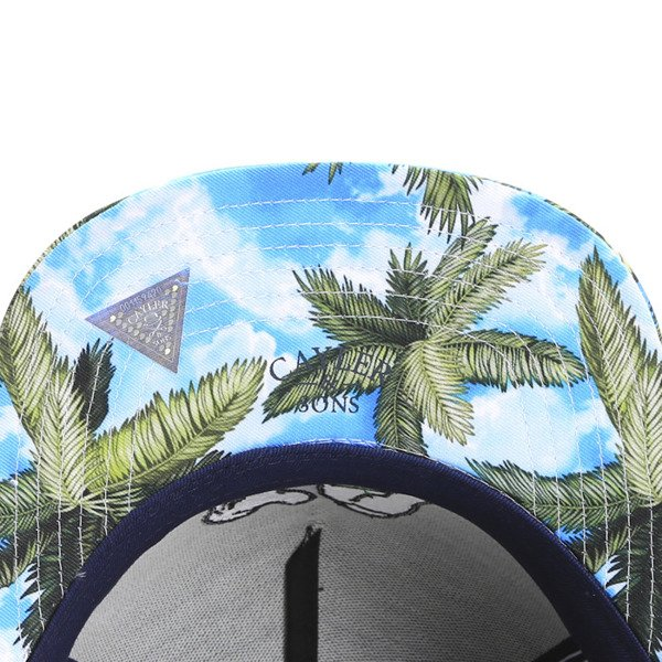 Cayler & Sons White Label snapback Rainmaker Cap deep / navy (WL-CAY-SS16-20)