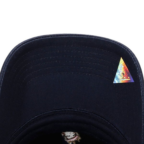 Cayler & Sons cap White Label A Dream Curved Cap navy