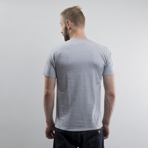Dziedzic Pruski t-shirt Promile light grey heather