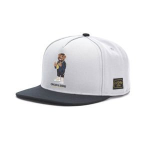 Czapka Cayler & Sons WHITE LABEL WL Controlla Cap grey / navy