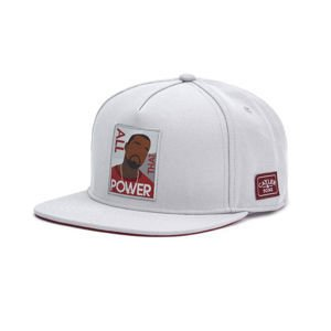 Czapka Cayler & Sons WHITE LABEL WL Power Cap grey / maroon