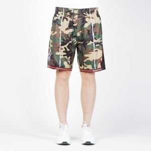 Szorty Mitchell & Ness Toronto Raptors camo Swingman Shorts