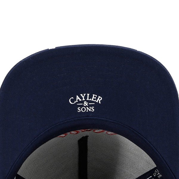 Czapka Cayler & Sons White Label In The House navy